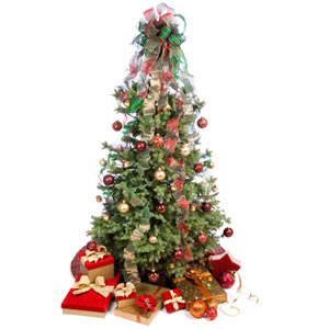 christmas tree gifts cards