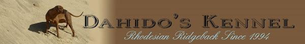 Dahido's Kennel