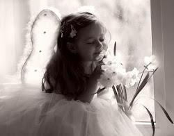 Os sonhos são ilustrações... do livro que sua alma está escrevendo sobre você !!!
