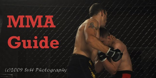 MMA Guide