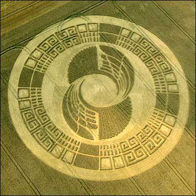 art design Crop Circle is mysterious natural phenomenon