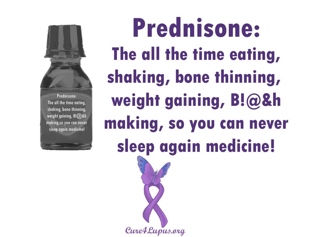 prednisone horse medication