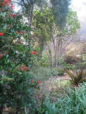 #96: Mildred E Mathias Botanical Garden