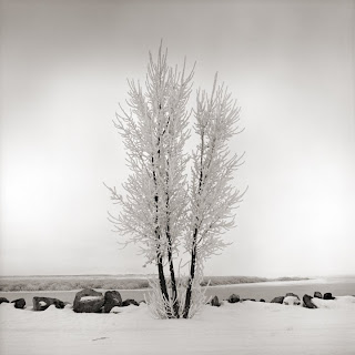 Utah Lake - Brandon Allen - Hasselblad