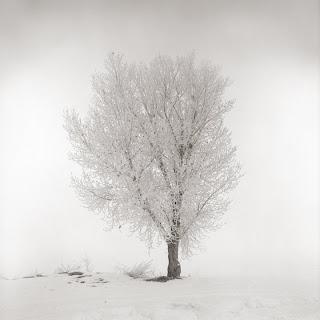 Utah Lake - Brandon Allen - Hasselblad