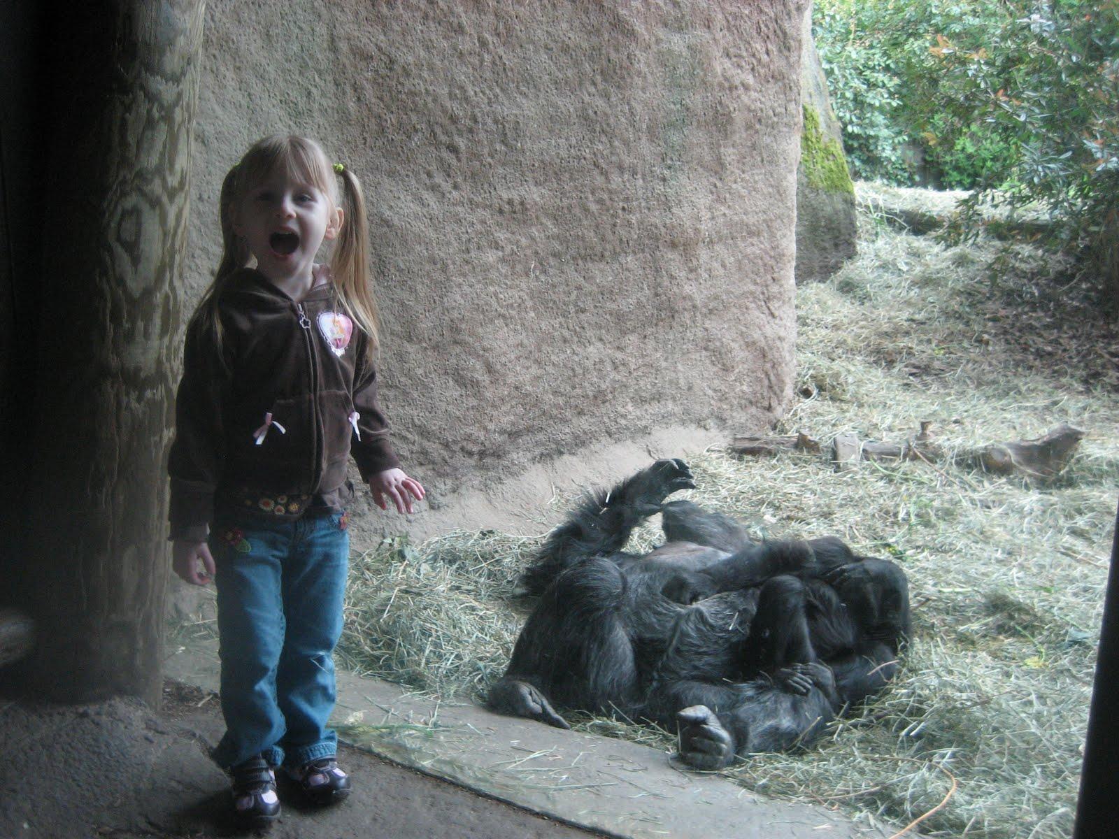 http://4.bp.blogspot.com/_i3Q70VQUzVY/S94aYEo__PI/AAAAAAAAARI/o7rqZf9Cw50/s1600/Zoo+April+2010+048.JPG