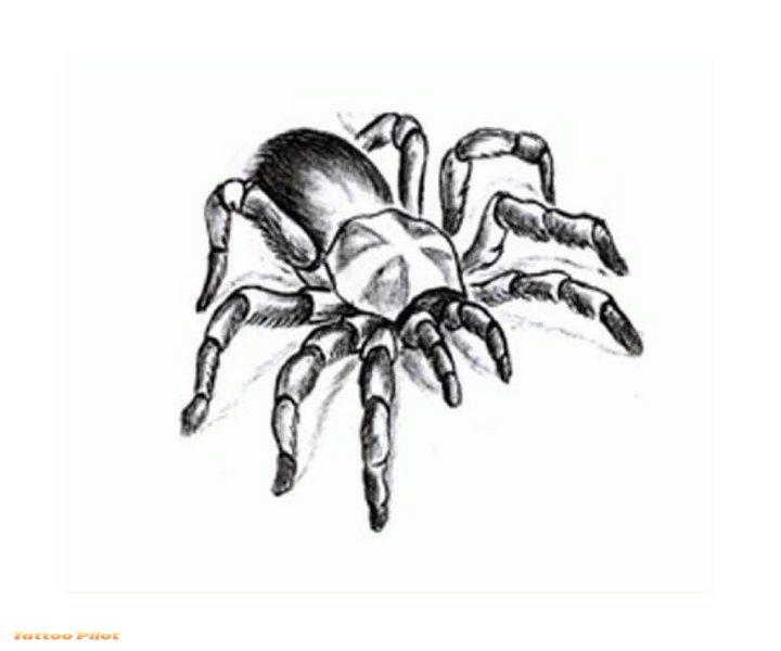 Spider tribal tattoo Design 4