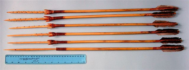 cheap practice arrows