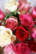 Ønsker deg en fin dag!