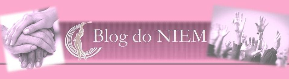 Blog do NIEM