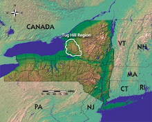 The Tug Hill Region