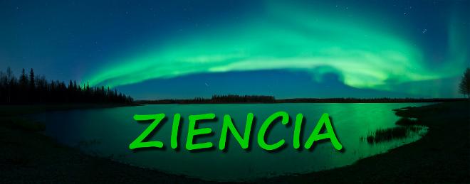 Ziencia