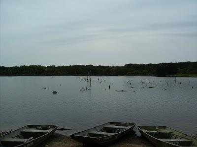Fish missouri busch wildlife ca lake 37 st charles for Lake charles fishing