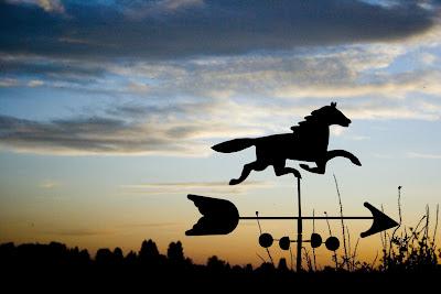 horse wind way