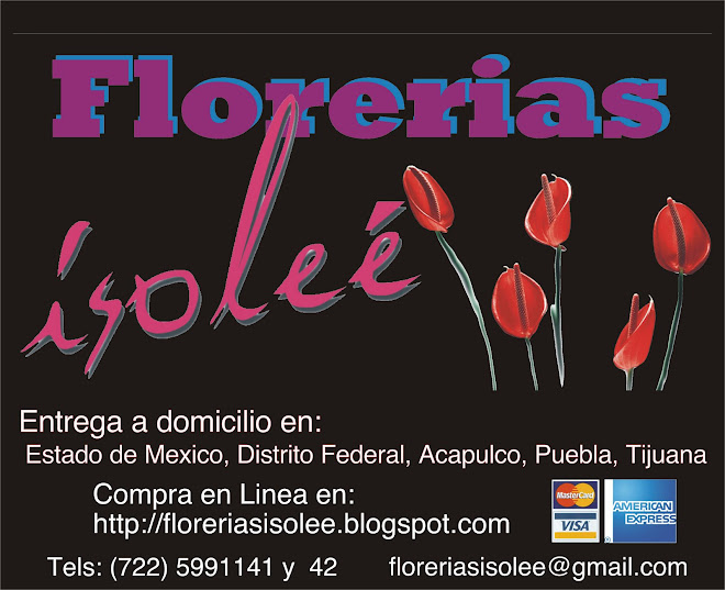 Isolee flowers store florerias isolee m xico desde los for Viveros en toluca
