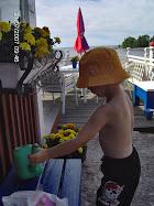 Bild från  sommarstället i Hammarö skärgård