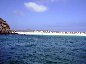 Punta Choros -IV Región