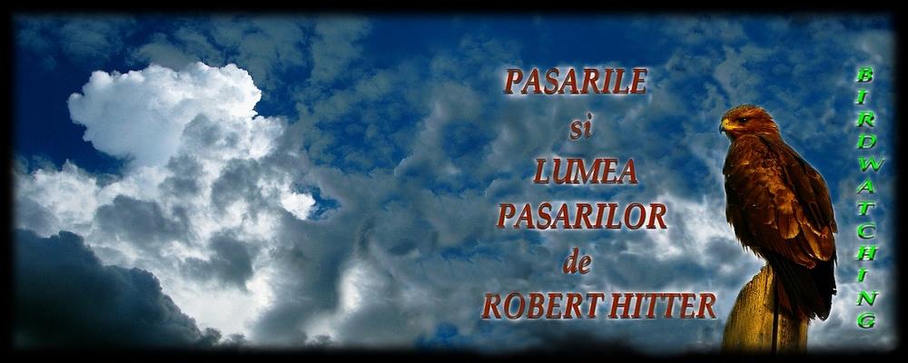 BIRDWATCHING-PASARILE si LUMEA  PASARILOR de ROBERT HITTER