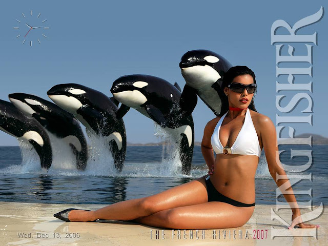 Kingfisher Calender  Sex Pictures