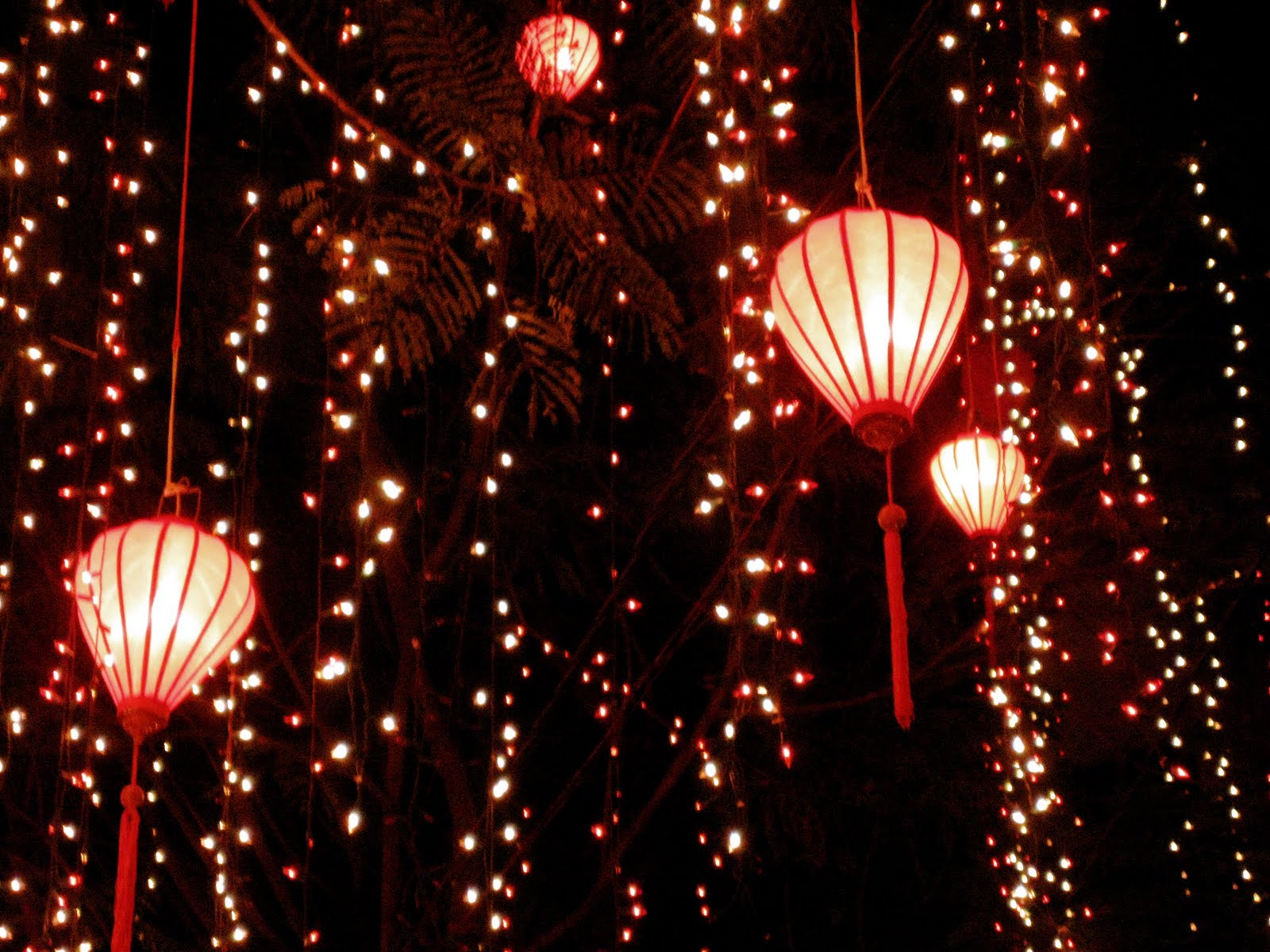 dragonflyinteriors beautiful vietnamese lanterns