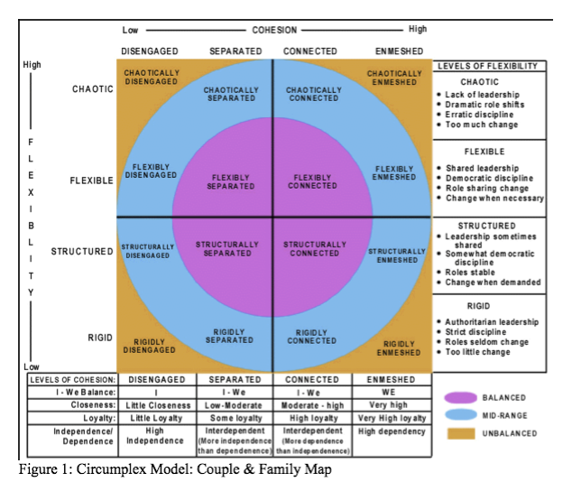 family systems therapy and theories Issues ment health nurs 2014 nov35(11):835-41 doi: 103109/016128402014 921257 an application of bowen family systems theory haefner j(1) author information: (1)university of michigan-flint, nursing, flint, michigan, usa while nurse practitioners initially work with the identified patient, murray bowen maintains.