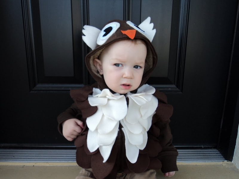 Beverley sent a picture of  Emma enjoying some of her candy loot . The owl hat is just so cute!  sc 1 st  Pure Joy Events & Pure Joy Events: Owl Costume Parade