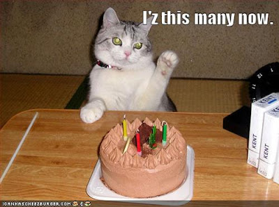 The Official Birthday Thread - Page 5 Funny-pictures-birthday-cat-can-count
