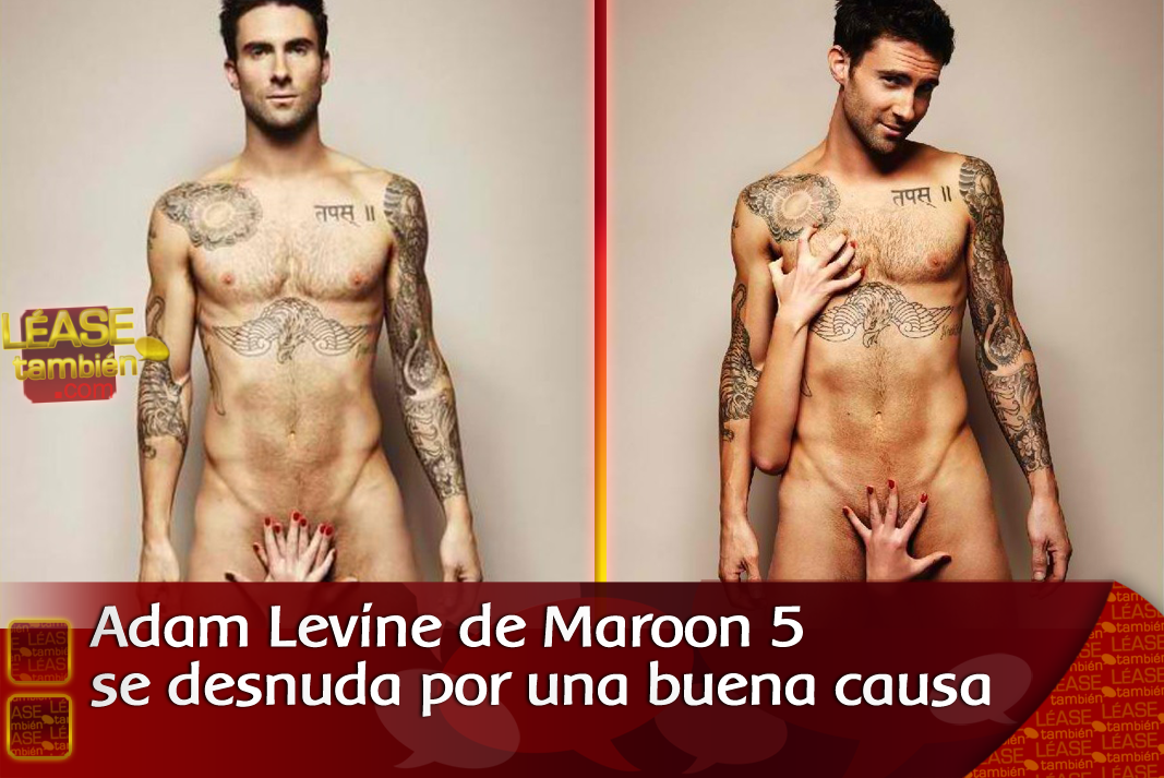 vocalista de maroon 5. vocalista de maroon 5. el