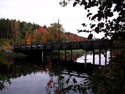 Whistler Bridge