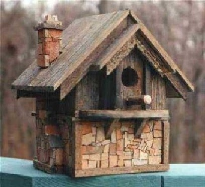 Deryck and brittany lesson on building bird houses for Building a quail house