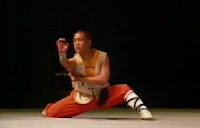 chinese kung fu basics, kung fu martial arts techniques, kung fu shaolin history, movie kung fu fighting