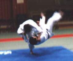 budo,judo dojo,judo gi,judo jujitsu,judo mat,judo movies,judo training,judo uniform,judo videos 2