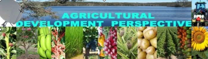 AGRICULTURAL DEVELOPMENT PERSPECTIVE