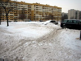 Зима в Петербурге, зимние тропинки