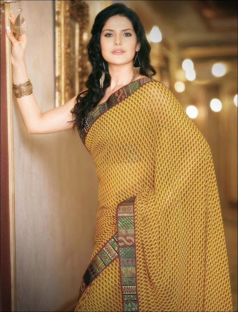 Zarine+Khan+Saree+Photoshoot+ +005 Karikalan Movie Actress Zarine Khan in Saree