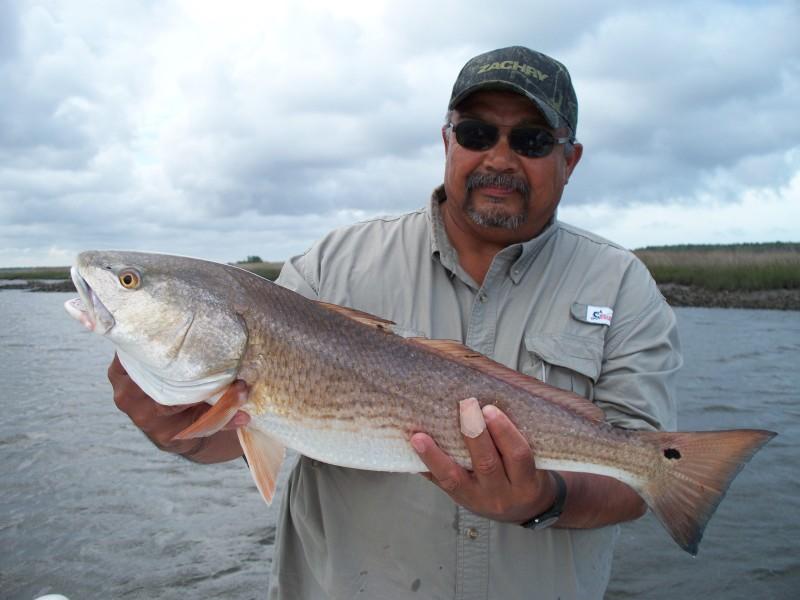 North florida fishing report north florida fishing report for North florida fishing report