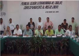 PRIMERA SESION EXTRAORDINARIA DE CABILDO CORRESPONDIENTE AL MES DE ENERO