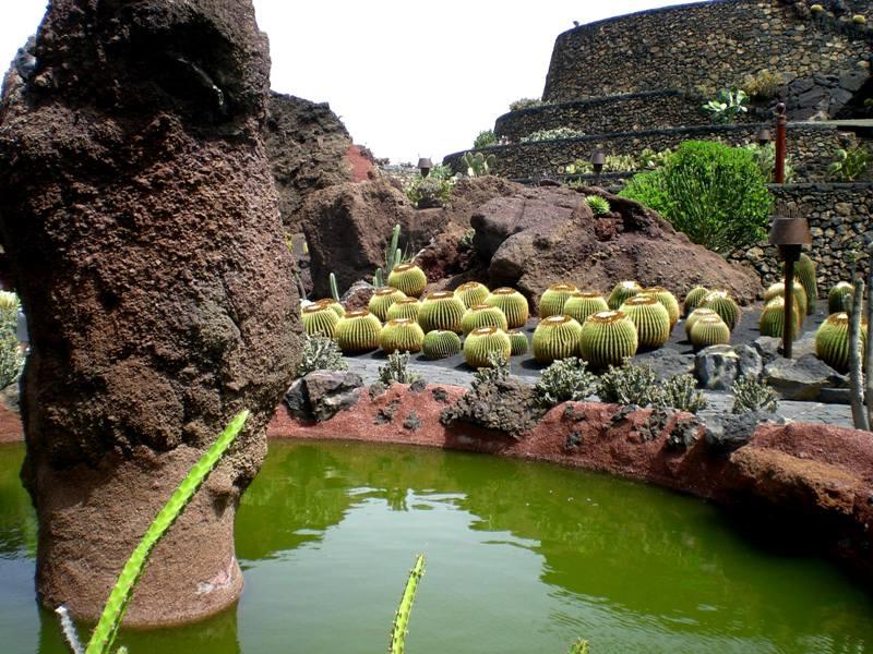 Vicheando jardin de los cactus lanzarote for Jardin de cactus lanzarote