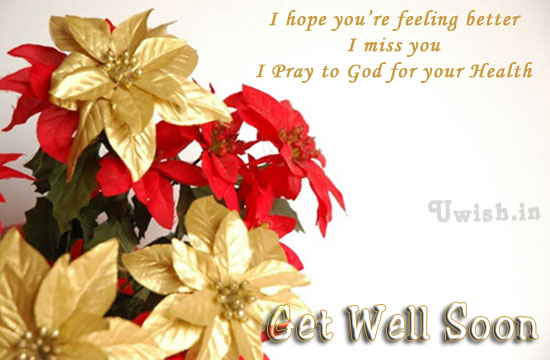 Get well soon E greeting cards and wishes with flowers.