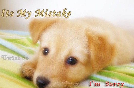 Sorry E greetings and wishes with a cute look by a puppy dog