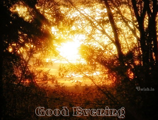 Good evening wishes and e greeting cards with sunset.