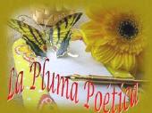 Premio La Pluma Poetica