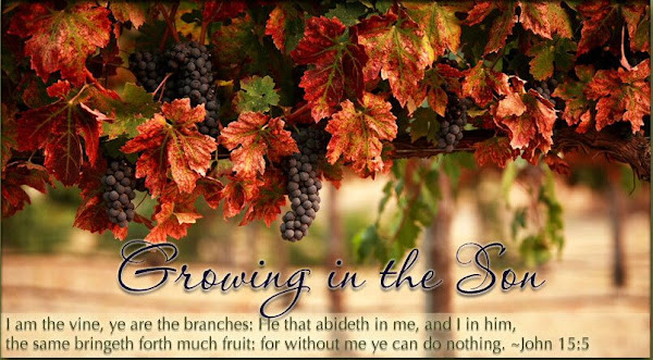 Living on the Vine,Growing in the Son