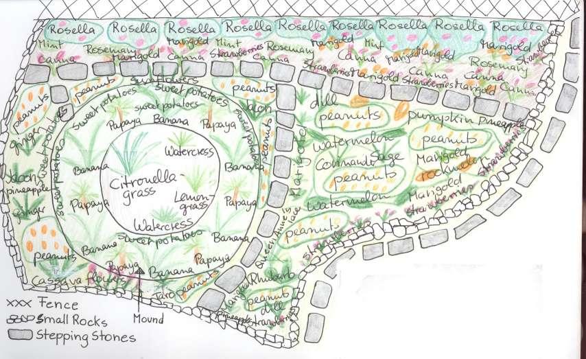 Lesurvivaliste l 39 organisation du milieu rural for Potager permaculture plan