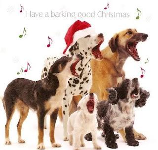 Cartoon network walt disney pictures dog christmas cards dog christmas cards m4hsunfo