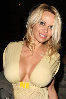 Pamela Anderson spends one hour with a mystery guy in an outdoor bathroom