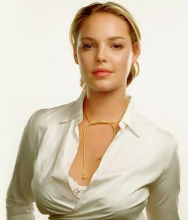 Katherine Heigl saved 25 Chihuahuas