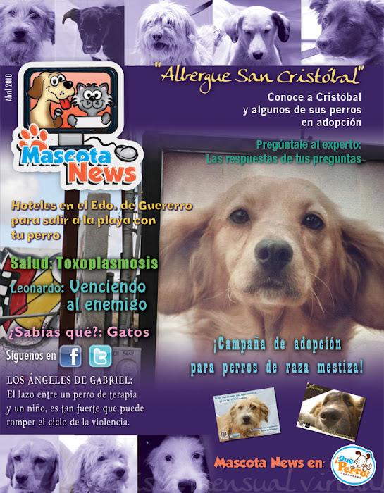 Revista del mes de Abril!