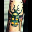 besouro tatuagem
