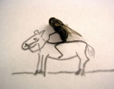 kudaku lari gagah berani